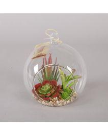 GB3671-Glass Globe Succulent GN/RD, LG