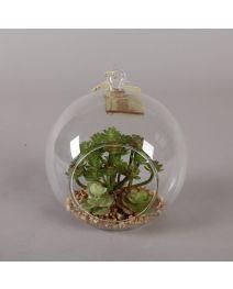 GB3672-Glass Globe Succulent Green, LG