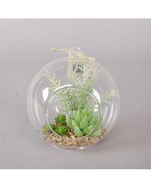 GB3677-Glass Globe Succulent Lt GN, LG