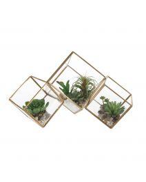 GS3914-Cube Terrarium Succulentulent